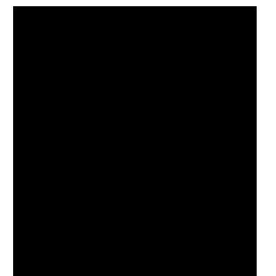 Portrait_icon